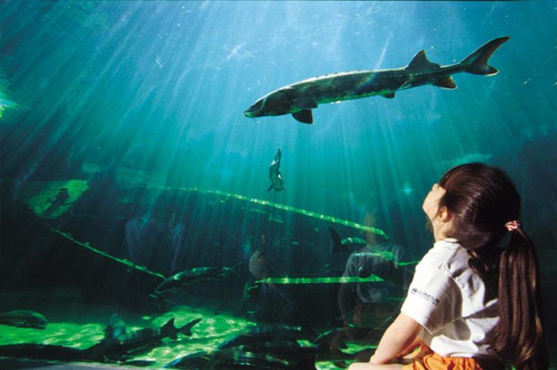 L'Aquarium de Périgord